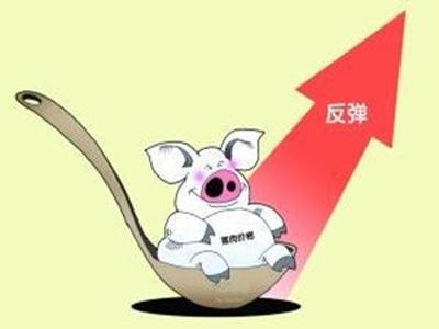 长短期猪价分析