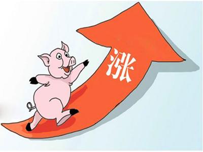 年末猪价上涨可期